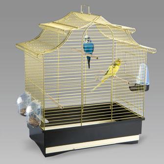 Come pulire la gabbia degli uccelli
