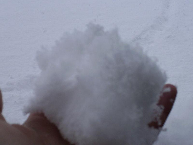 Come pulire il tappeto...con la neve!