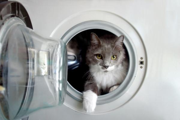 Pulizia della lavatrice