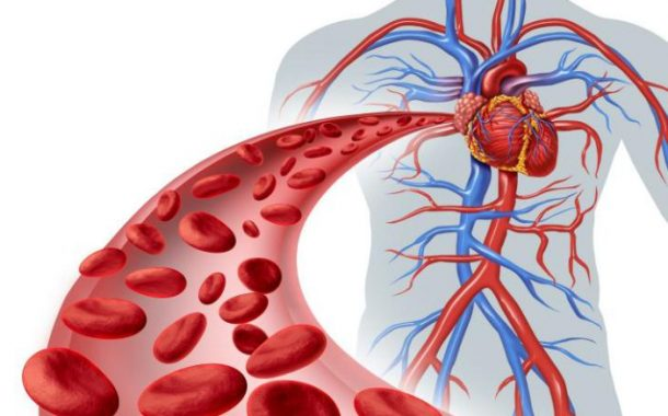 Come pulire le arterie