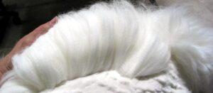 Pulizia lana d'angora